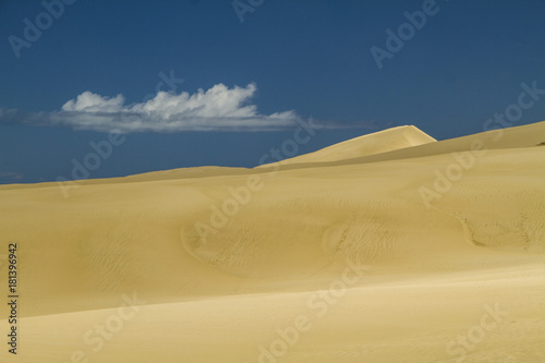 Poster Nachtblauw giant sand dunes