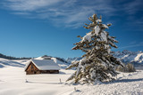Cabin near Stanley Idahi winter with snow covered pine tree - 181397735