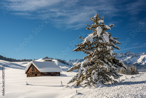 Cabin near Stanley Idahi winter with snow covered pine tree