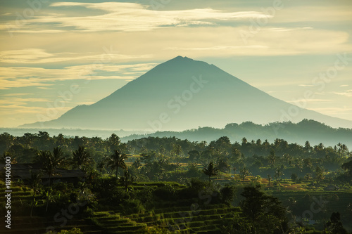 In de dag Bali View to the Jatiluwih rice terraces at sunrise on Bali island, Indonesia