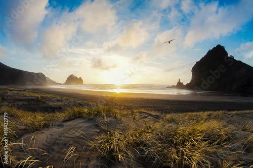 Staande foto Grijze traf. piha beach sunset new zealand