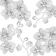 Vector illustration. Beautiful Phalaenopsis Orchid in a  flower pot. Black and white pattern can be used for coloring.
