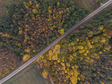 Aerial view over Autumn season woods in Lithuania rural village. - 181446350