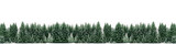 Fototapety Panorama of spruce tree forest covered by fresh snow during Winter Christmas time. The winter scene is almost duotone due to contrast between the frosty spruce trees, white snow foreground and sky
