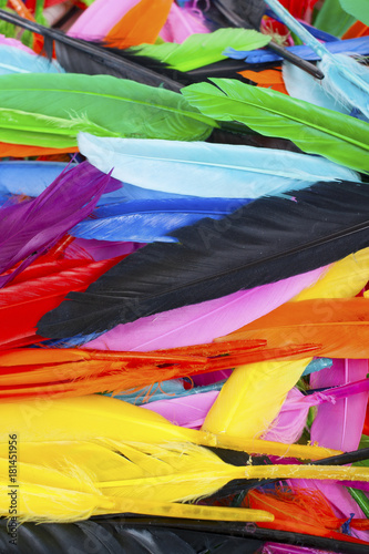 Plexiglas Papegaai Beautiful rainbow color colored bird feathers. Parrot colors goose duck colorful painted feathers. Feather texture background or wallpaper for any concept. Studio photo background.