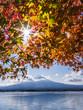 Autumn with Mt Fuji