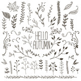Hand Drawn Floral Autumn Design Elements - 181473589
