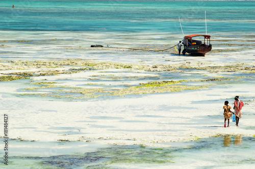 Foto op Aluminium Zanzibar Fisherwomen in Zanzibar