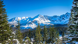 Snowy peaks in Tatra mountains winter, Poland - 181484516