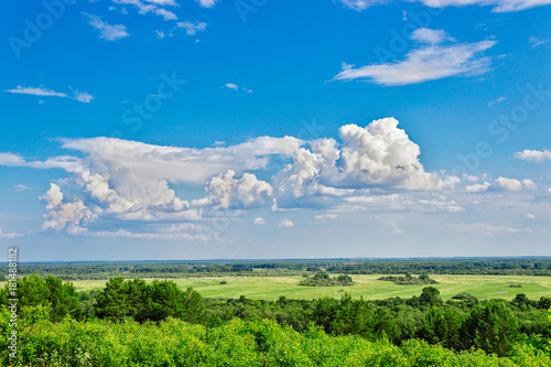 Fotobehang Zomer meadow and forest