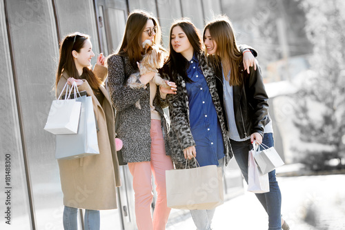 Group of happy friends shopping together. Poster