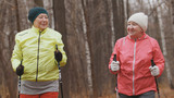 Nordic walking for elderly women outdoor - two happy senior ladies have training outdoor - 181490312