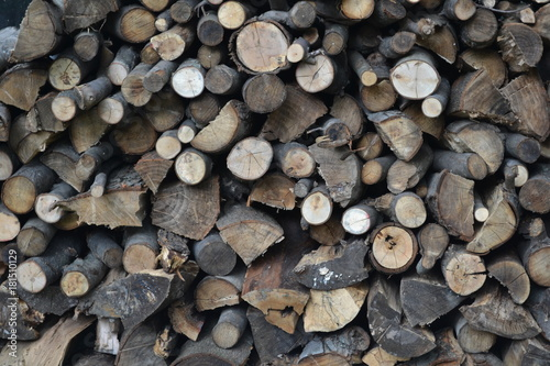 Foto op Canvas Brandhout textuur Large Wood Pile