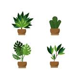Isolated plants design