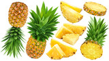 Pineapple collection. Whole and sliced pineapple isolated on white background - 181528511
