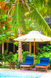 Beautiful luxury landscape around swimming pool in hotel resort