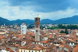 Lucca skyline tower - 181573519