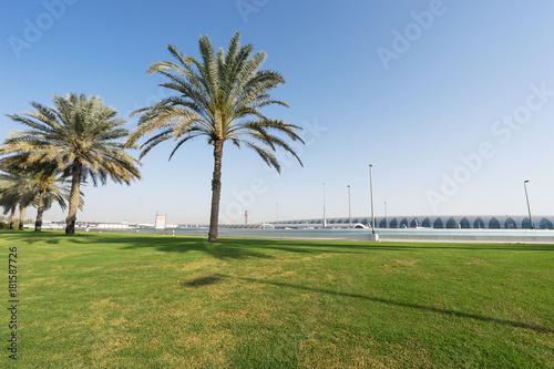 green meadow in blue sky