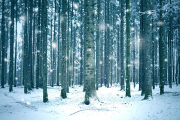 Winter season forest landscape with abstract snowflakes. © robsonphoto