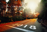 New Year 2018 number painted on colorful sunset asphalt road. - 181595703
