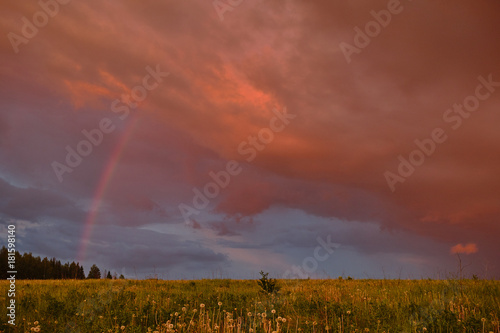 Foto op Plexiglas Diepbruine Rainbow in summer in the field