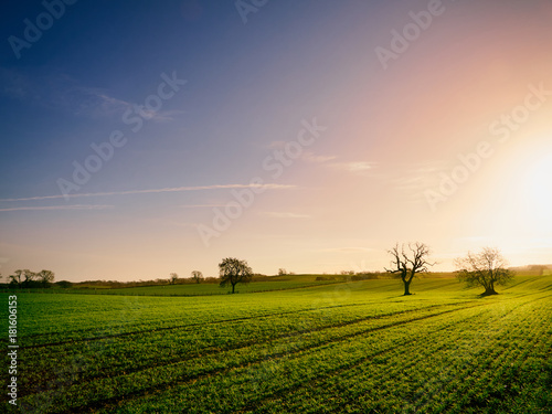 Staande foto Ochtendgloren Red, Orange and yellow glow of a sunset over green pastures and trees in the English Countryside.
