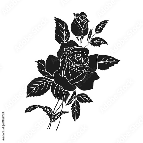 silhouette of rose