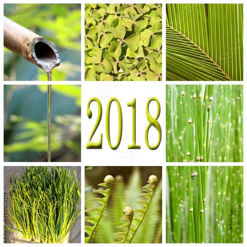 Foto Murales 2018, green vegetation collage