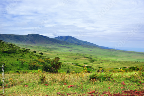 Foto op Canvas Pistache Tanzania green hills, Africa