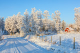Winter road with a red cottage in rural landscape - 181649784
