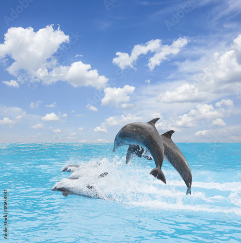 Plexiglas Dolfijn pack of jumping dolphins, beautiful seascape with deep ocean waters and cloudscape at bright day
