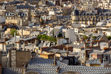 Paris rooftops in summer with their roof gardens, mansard and French roofs. 17th Arrondissement of Paris, France - 181659549