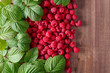 Raspberry with leaves .