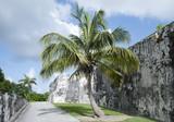 Nassau City Fort Charlotte - 181671549