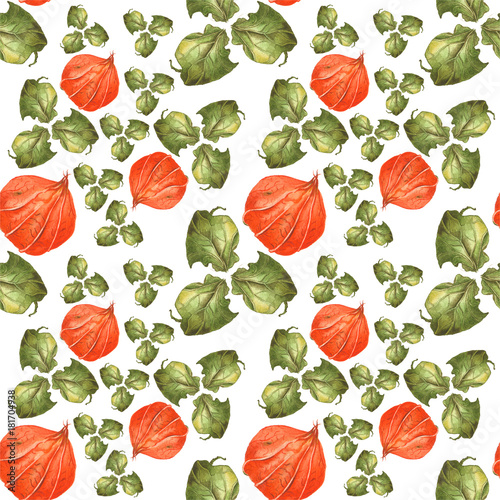 Orange flowers physalis and green leaves on white background. Seamless watercolor pattern - 181704938