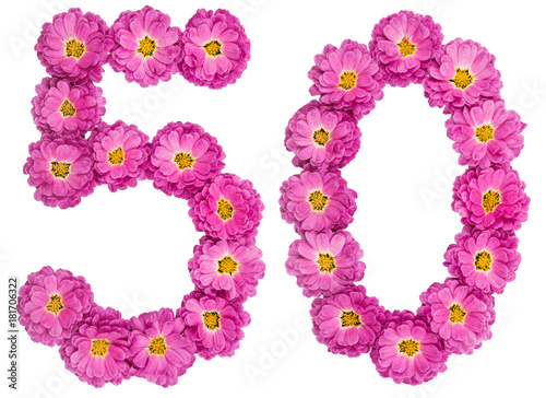Poster Arabic numeral 50, fifty, from flowers of chrysanthemum, isolated on white backg