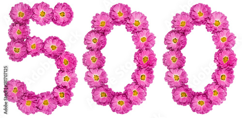 Poster Arabic numeral 500, five hundred, from flowers of chrysanthemum, isolated on whi