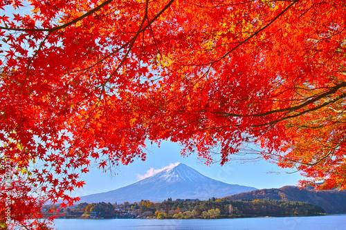 Fotobehang Rood traf. 秋の河口湖から見る富士山と紅葉