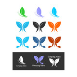 butterfly icon isolated