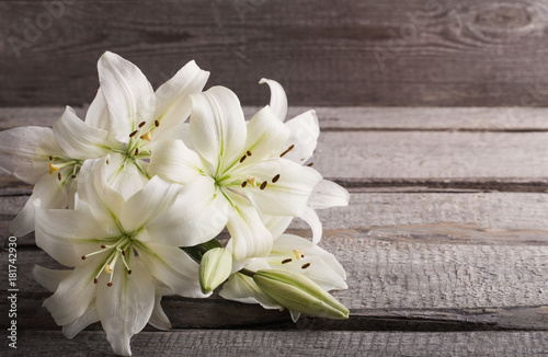 white lily on old wooden background Poster