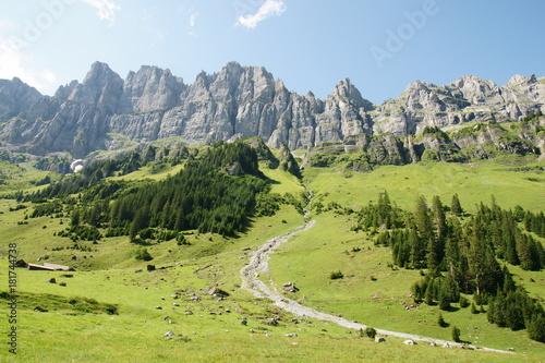 Fotobehang Pistache Uphill