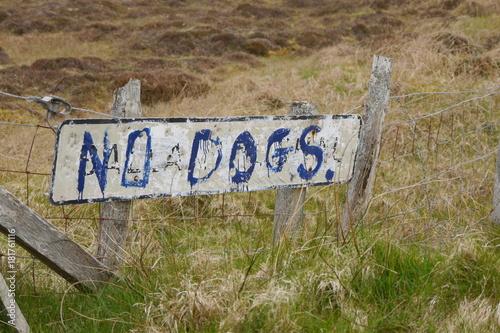 Hunde verboten - kein Zugang Poster