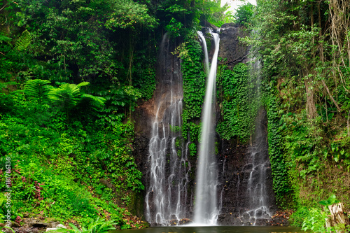 Beautiful waterfall in green forest. Nature landscape background - 181786136