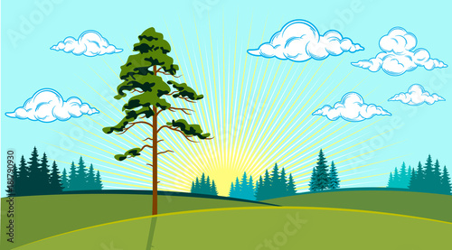 Deurstickers Lichtblauw Summer landscape of the valley with trees on the background of the sun