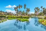 Echo park pond in Los Angeles - 181803544