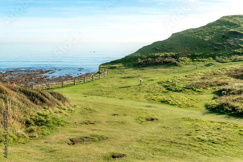 Poster Pistache Seaford cliffs near Seven Sisters