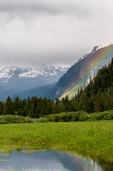 mountain and forest rainbow