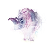 Watercolor rhinoceros on the white background - 181863196