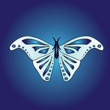 Vector image of a large symmetrical butterfly. Wings of the insect are light blue with a beautiful indigo pattern. Butterfly on a blue background. Stylish youthful bright print. - 181876178