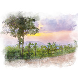 Palisade and tree beside dirt road in a rural area with mountain and beautiful sky background. Watercolor painting (retouch). - 181882169